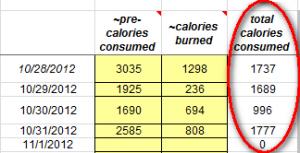 CaloriesSnapShot